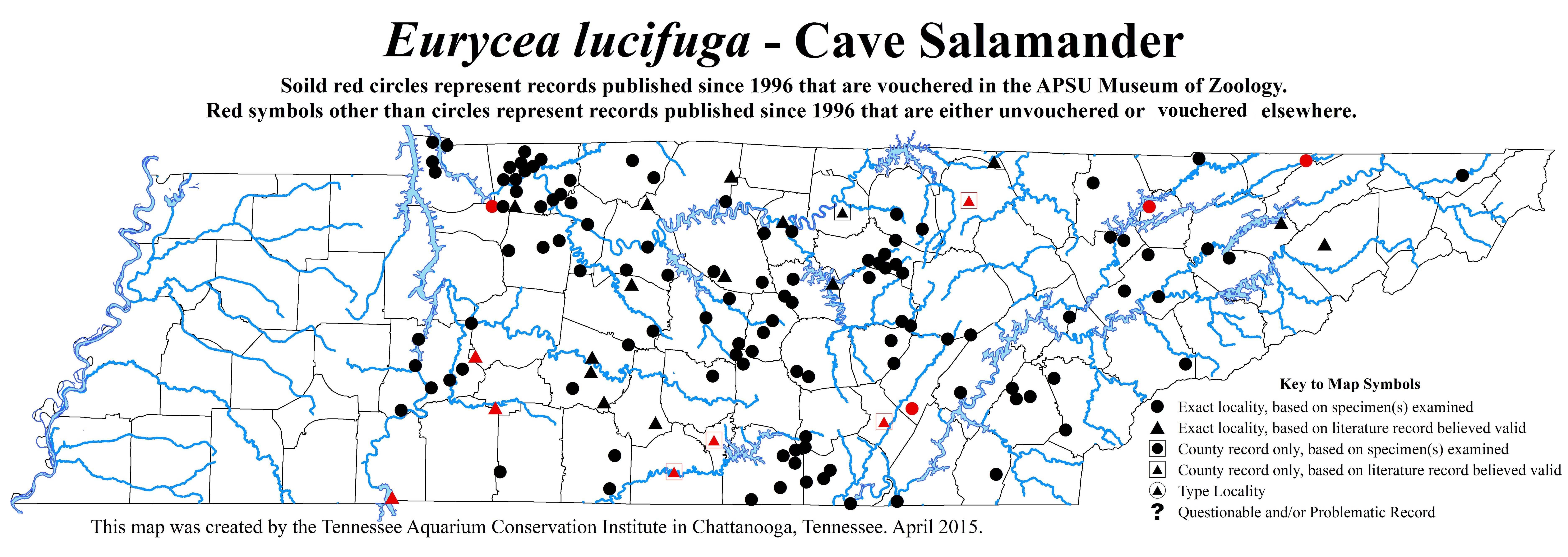 Eurycea lucifuga - New County Records